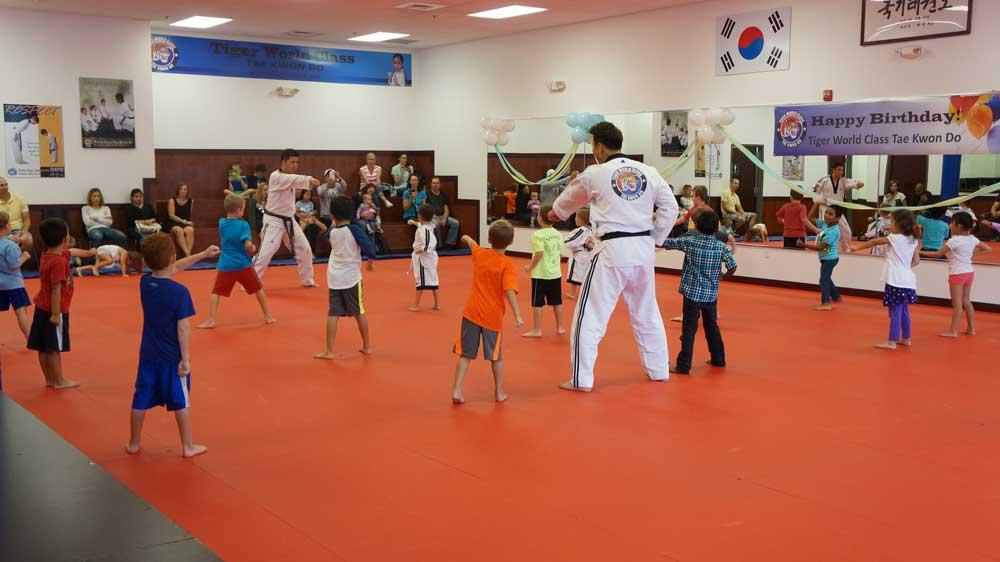 Tiger World Class Taekwondo & Family Martial Arts Birthday punching