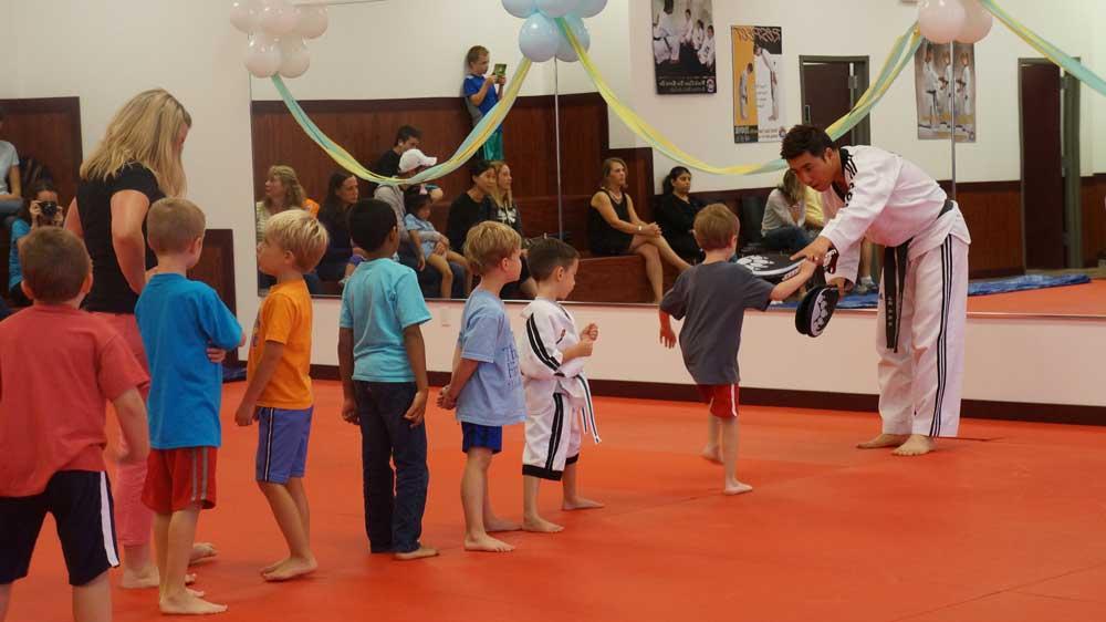 Tiger World Class Taekwondo & Family Martial Arts Birthday Lesson