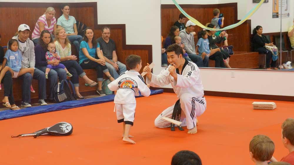 Tiger World Class Taekwondo & Family Martial Arts Birthday Party board breaking